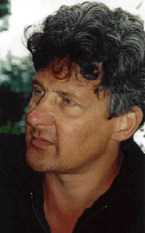 Professor Hans Akkermans